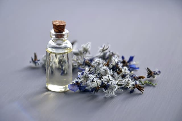 Studies find lavender oil relieves menstrual cramps