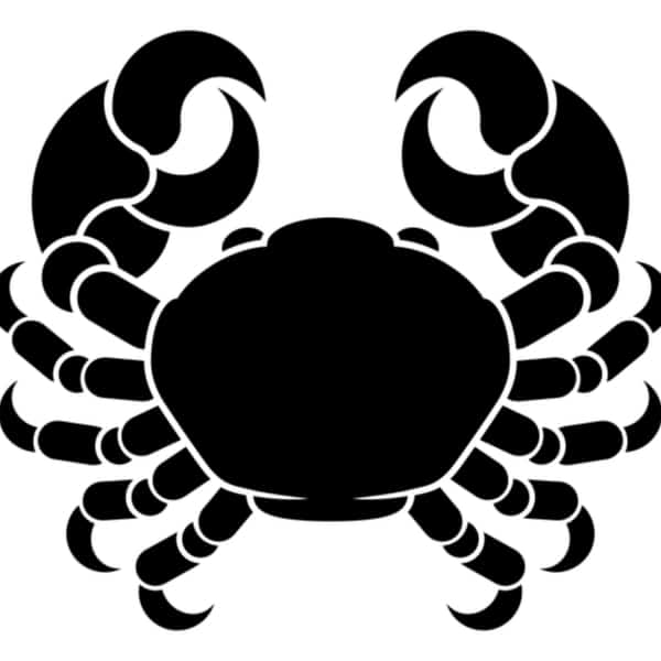 The Cancer Crab
