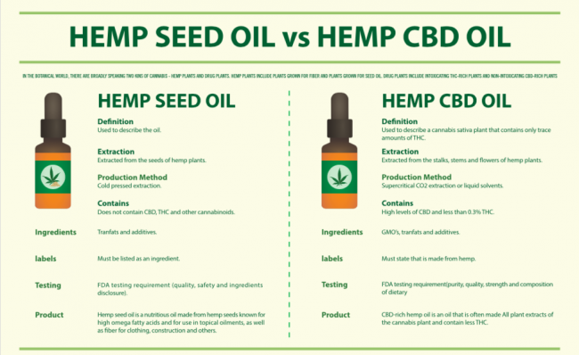 hemp oil vs hemp cbd oil e1594404361566 - Everything about Cb2 Hemp Seed Oil - Vasse Valley
